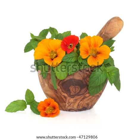 Nasturtium flower and mint herb salad in an olive wood mortar with pestle, isolated over white background. - stock photo