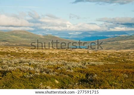 National park Dovrefjell-Sunndalsfjella in Norway, a landscape - stock photo