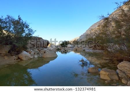National park Ein Avdat spring. Negev Desert. Israel - stock photo