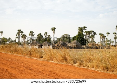 Native village in Senegal with red road and palm-tree houses