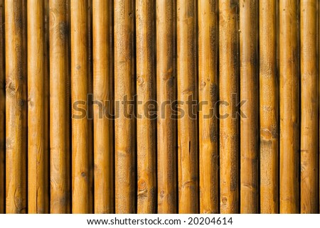 Natural abstract wood background texture - stock photo