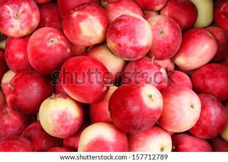 Natural apples / HQ stock photo of ripe apples