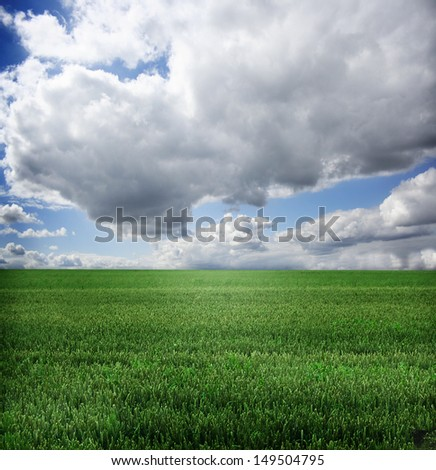 natural background. Grass and sky - stock photo