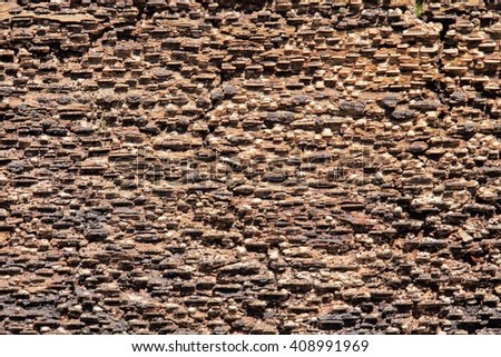 Natural background inside of the bark of a tree. - stock photo