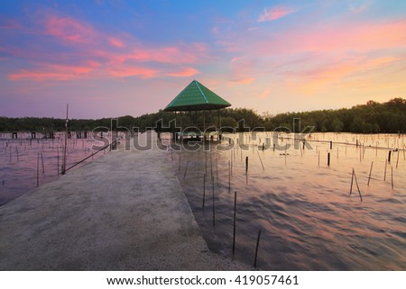 Natural background of route amidst the sea and the mangrove forest and beautiful nature during sunrise ,sunset. Beautiful landscape of Thailand - stock photo