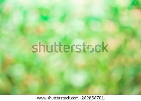 natural  background with selective focus - stock photo