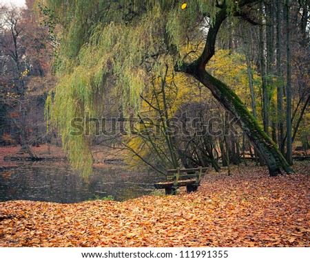 Natural backgrounds: pond in autumn park