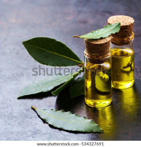 Natural bay laurel essential oil for beauty and spa