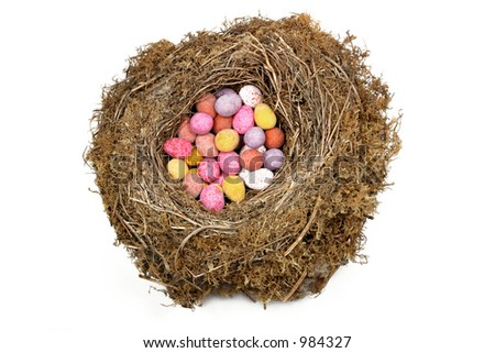 Natural bird nest filled with multi colored easter eggs against a white background. - stock photo