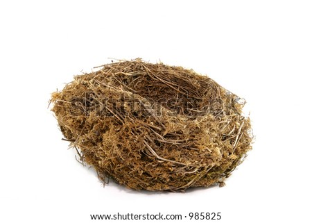 Natural birds nest against a white background. - stock photo