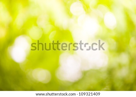 Natural blurred background full of green color, copy space - stock photo