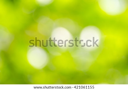 Natural blurred green background, the bokeh effect - stock photo