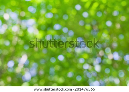 natural bokeh background, blurred summer leaves - stock photo