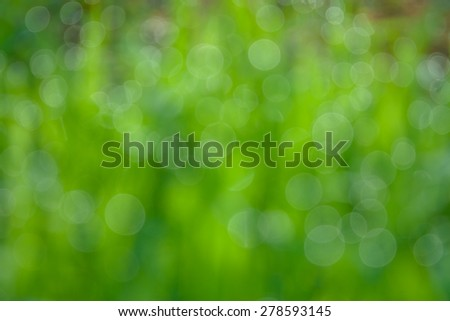 natural bokeh , blurred background - stock photo