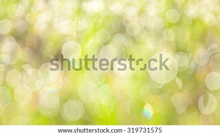 natural bokeh , blurred background