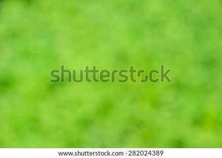 Natural bokeh. Blurred background full of green color, copy space - stock photo