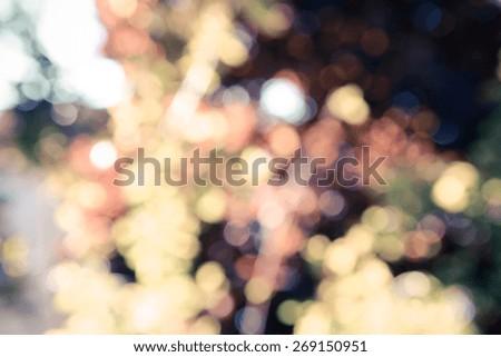 natural bokeh, blurred bokeh, blur background. - stock photo