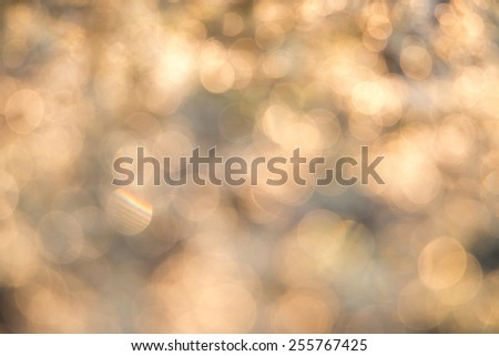 Natural bokeh Of dew in the tea plantation - stock photo