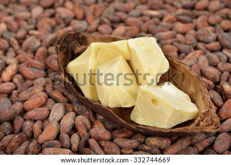 Natural cocoa butter and cocoa beans - stock photo