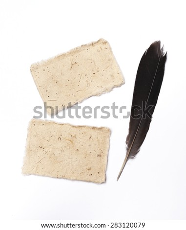 Natural color card with black feather on white background - stock photo