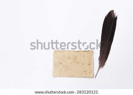 Natural color card with black feather with space on white background - stock photo