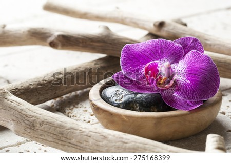 natural elements for beauty spa treatment - stock photo