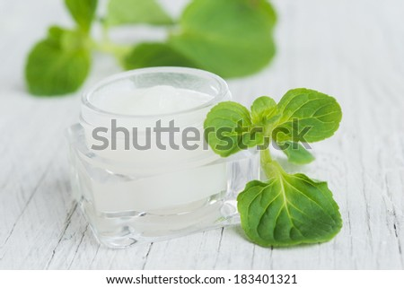 Natural facial cream with mint - stock photo