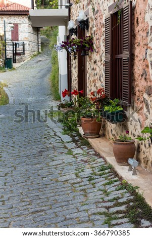 Natural flowers in front of the house with a paved street