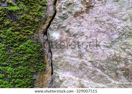 Natural fractured stone and moss in forest.