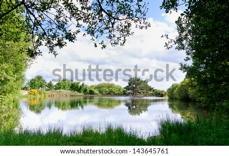 Natural frame in the lake in a sunny spring day