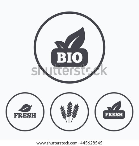 Natural fresh Bio food icons. Gluten free agricultural sign symbol. Icons in circles. - stock photo