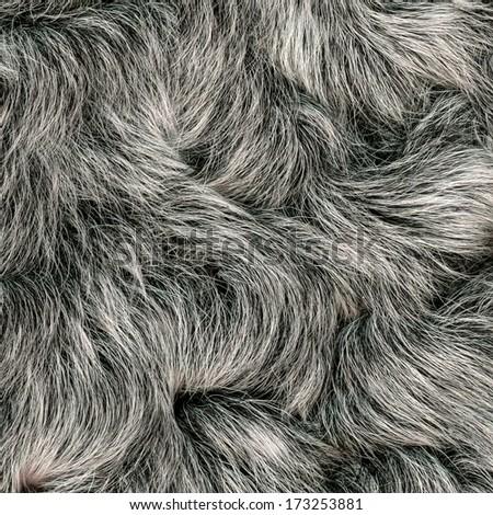 natural fur texture  - stock photo