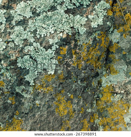 Natural granite stone texture background. Rough and rusty. Close-up, macro - stock photo