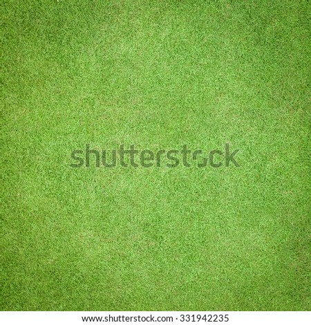 Natural grass texture patterned background in golf course turf from top view: Abstract background of authentic grassy lawn environmental textured pattern backdrop in bright yellow green color tone - stock photo