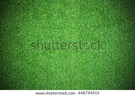 Natural grass texture patterned background in golf course turf from top view: Abstract background of authentic grassy lawn environmental textured pattern backdrop - stock photo