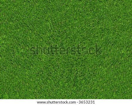 natural green grass field in high resolution - stock photo