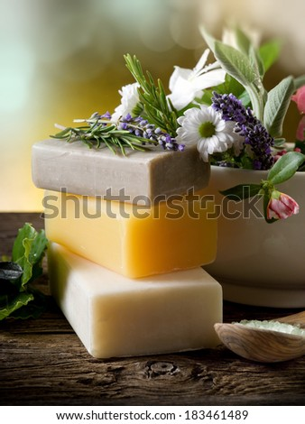 Natural Herbal Products-Spa cosmetics - stock photo