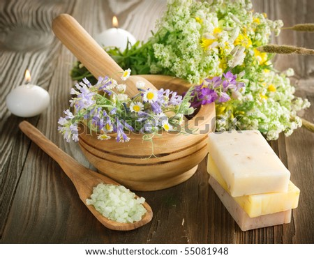 Natural Herbal Products.Spa cosmetics - stock photo