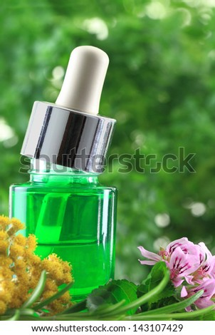 Natural herbs essential oil - stock photo