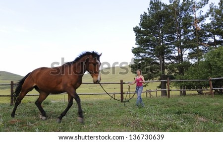 Natural Horsemanship.  Horse trainer working with horse in paddock, Himeville, kwazulu Natal, South Africa . Gathered movement and motion on a long rein.