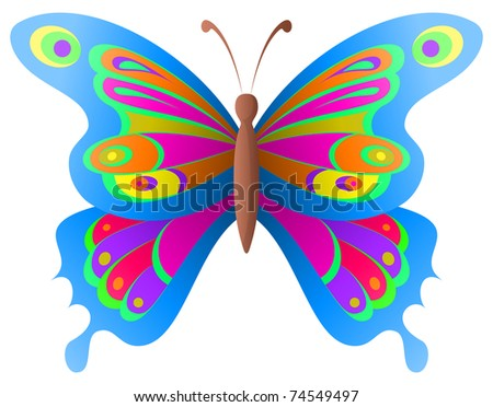 Natural image, beautiful butterfly with opened various wings - stock photo