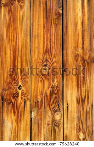 Natural Knotted Wood Texture
