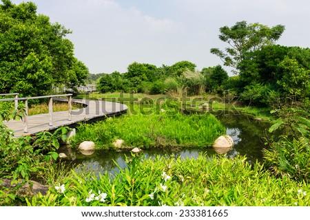 Natural landscape - stock photo