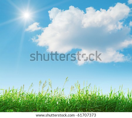 Natural landscape in the summer. Very nice background. - stock photo