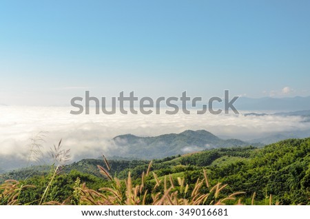 Natural landscape of mountains and sea of mist in the winter season,Thailand - stock photo