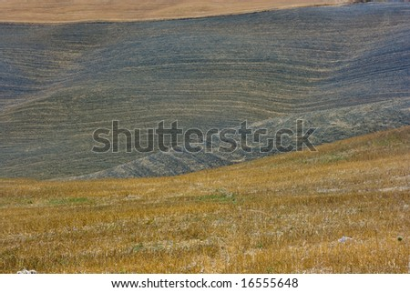 Natural Landscape of tuscany - stock photo