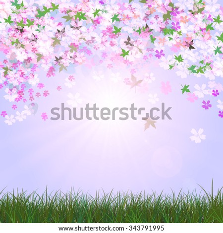Natural light background - stock photo