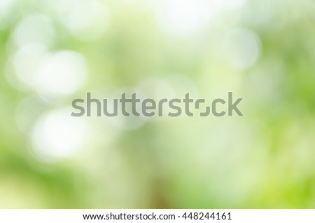 Natural light background bokeh