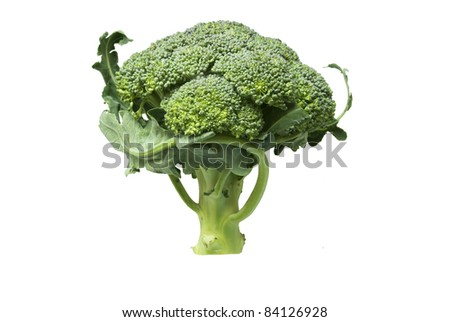 Natural Organic Broccoli isolated on white background - stock photo