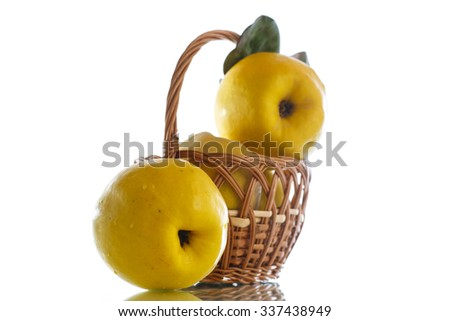 natural organic ripe quince on a white background - stock photo